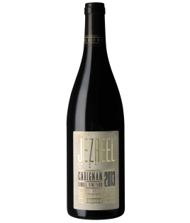 Jezreel Valley Winery - Carignan 2013